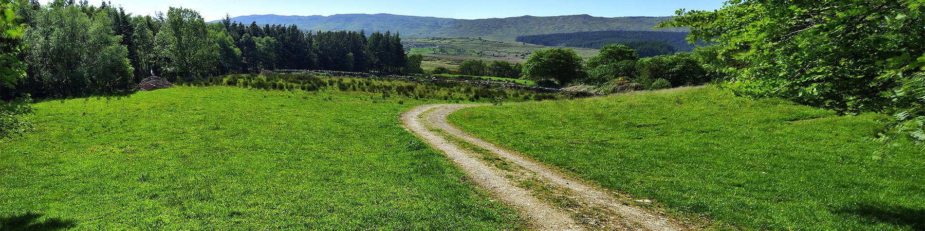 Connemara Nature Surrounding Glengowla Farm and Mines