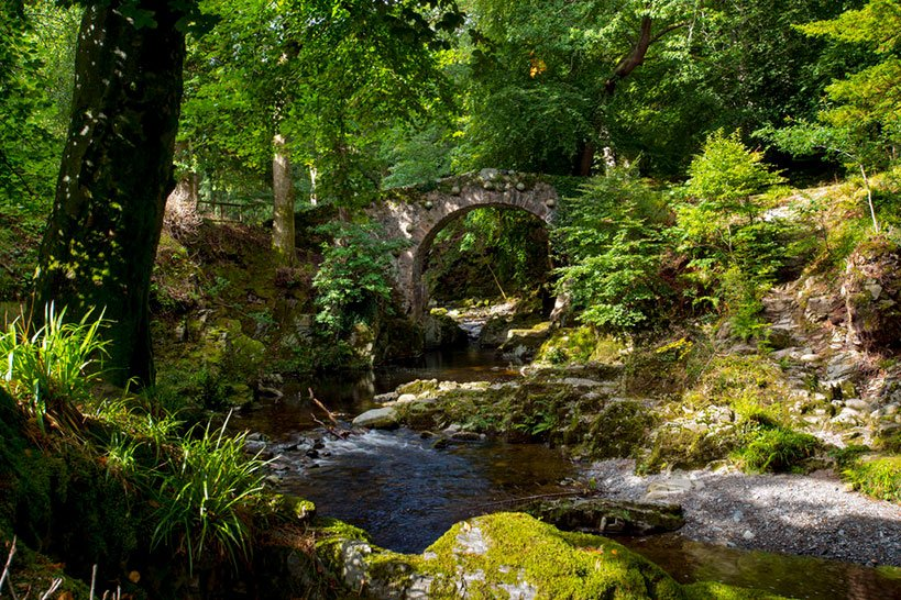 Tollymore Forest  On Your Game of Thrones Tour