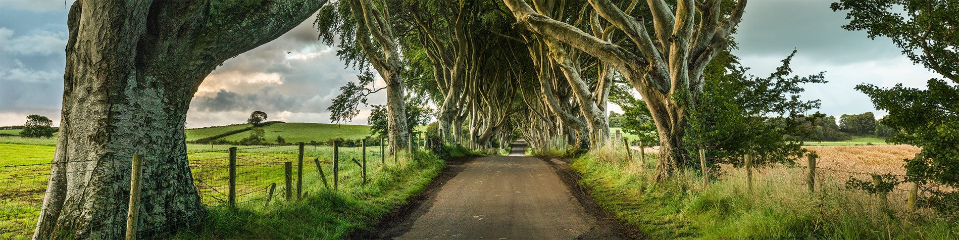 Game of Thrones Activities in Northern Ireland