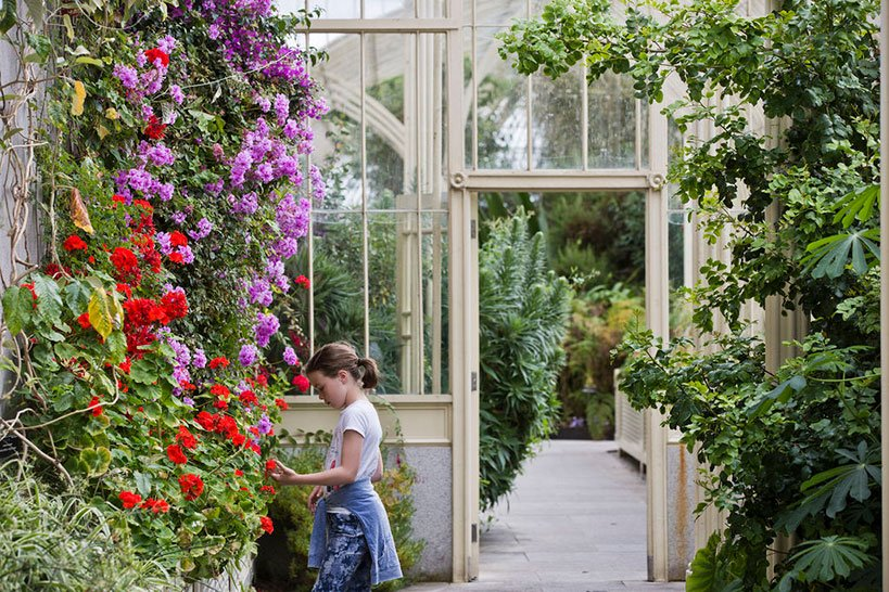 10 Free Things to Do in Ireland - National Botanic Gardens