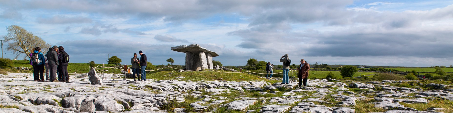 9 Attractions Educating About Irish Nature in the Burren and More