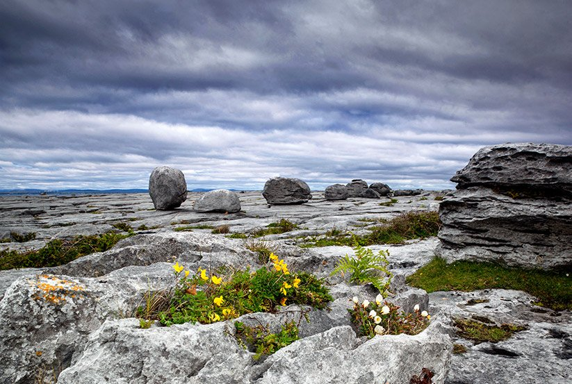 Karst Landscape in the Burren