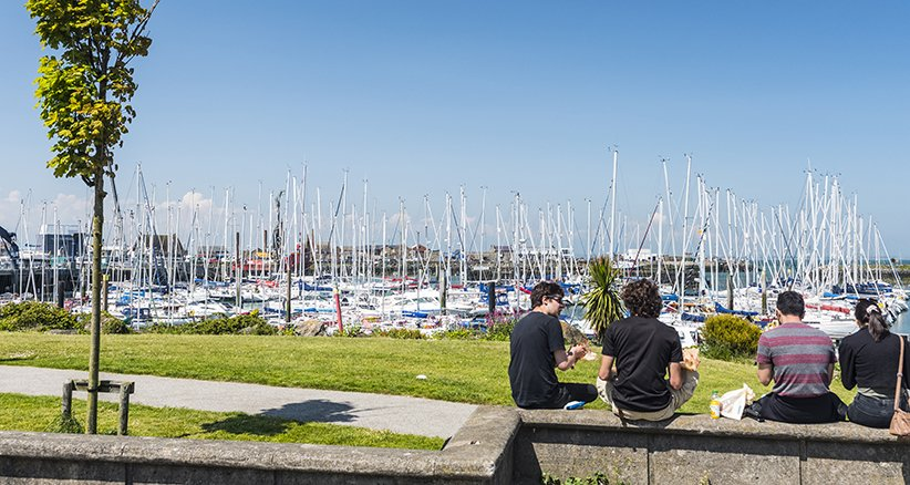 Howth Yacht Marina - Sunny Day By The Coast